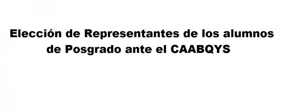 Elección de Representantes de los alumnos de Posgrado ante el CAABQYS