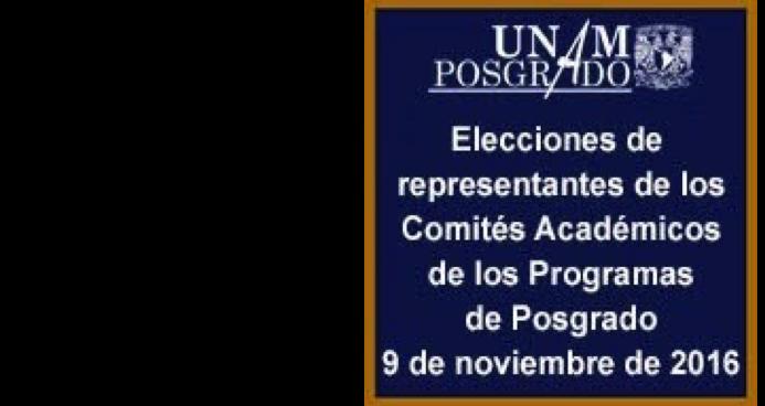 Elecciones de Representantes para integrar el Comité Académico del Programa de Maestría y Doctorado en Psicología